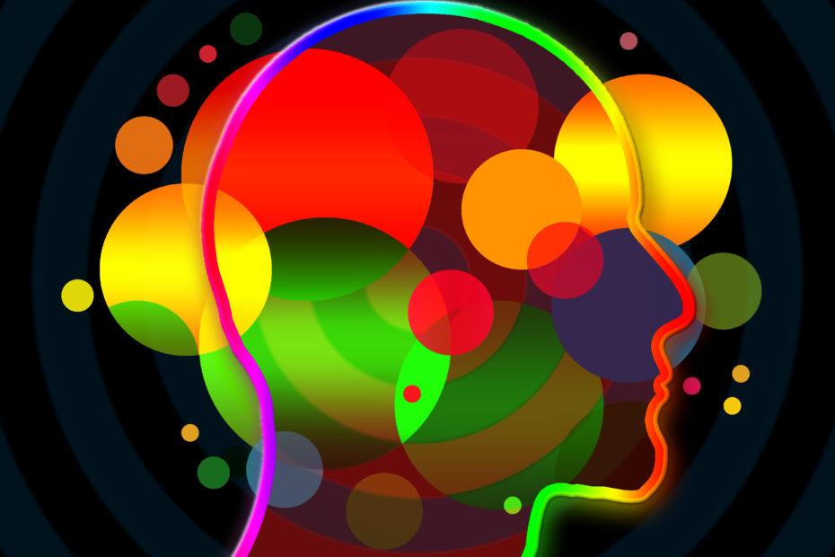 Cerebro inteligencia emocional