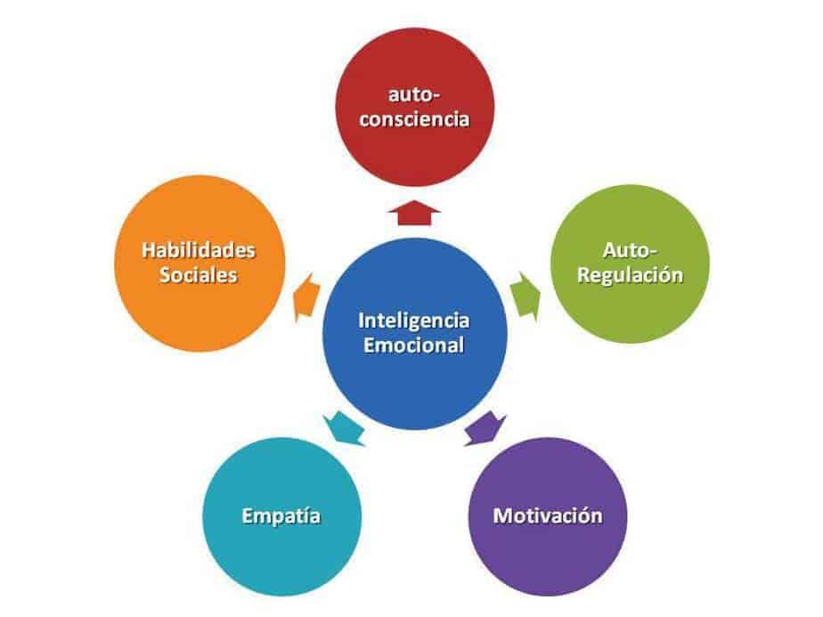 Los principios de la Inteligencia Emocional