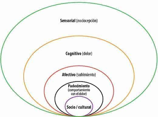 Modelo biopsicosocial del dolor crónico