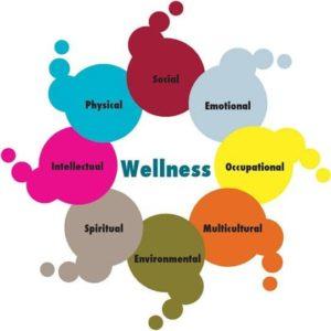wellness programa destres