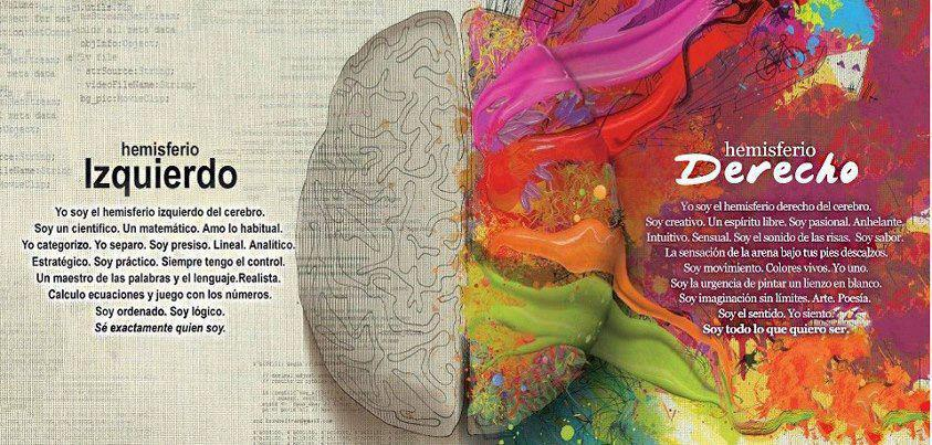emisferioscerebralesyfunciones