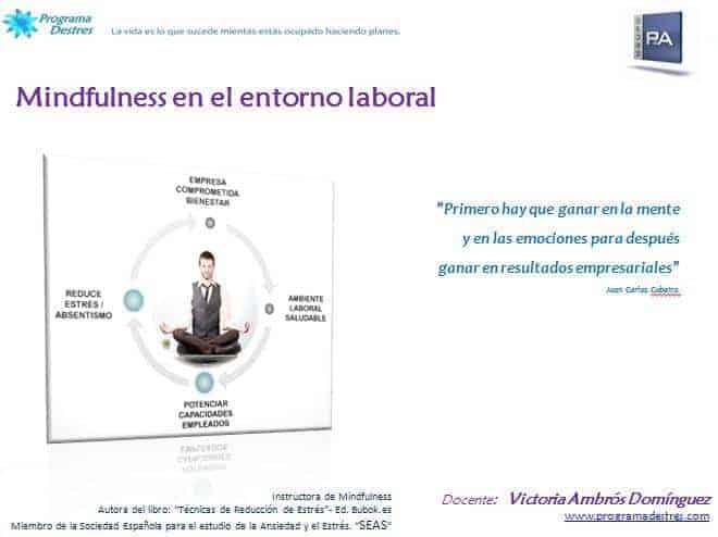 Mindfulness-Grupo P&A Consultores-ProgramaDestres