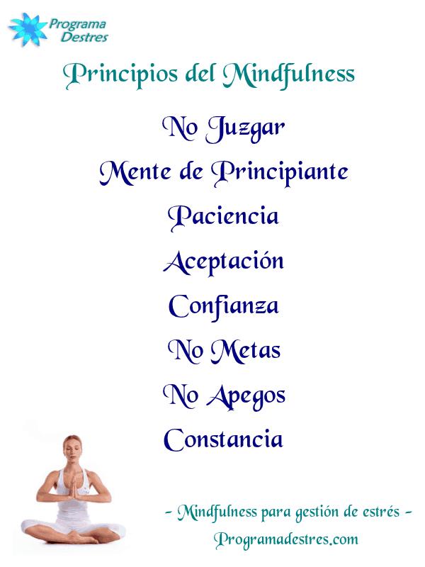 principios del mindfulness 5-programadestres