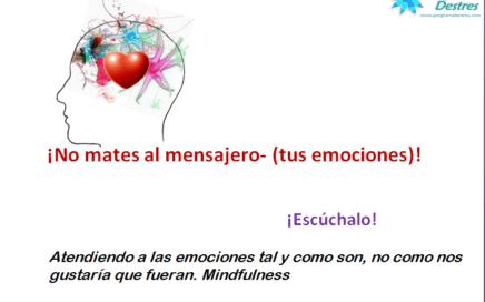 atencion-a-las-emociones-mindfulness