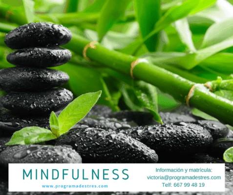 Mindfulness Sept 17-vigo