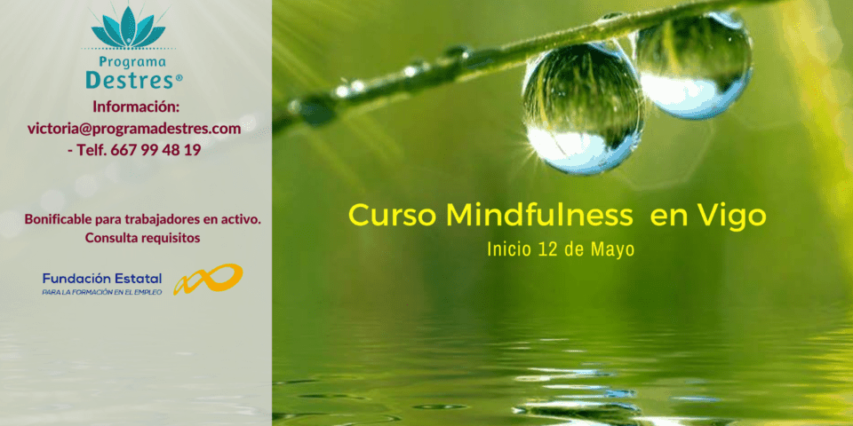 Curso Mindfulness para gestión de estrés - Mayo 18 - 14 Edición en Vigo
