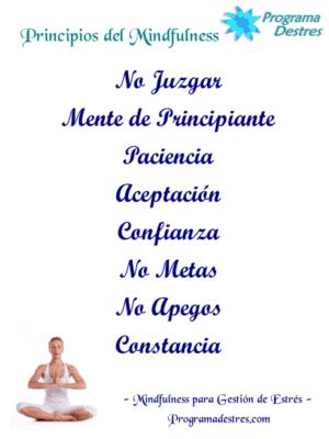 Actitudes en la práctica de mindfulness