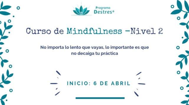 Grupo Mindfulness Avanzado Programa Destres -ABRIL19