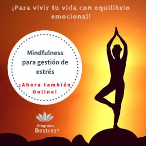 curso mindfulness online